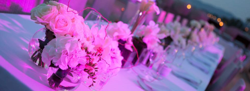 pulp-event_receptions-et-fetes_03